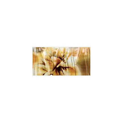 Դեկոր 16.65x33.3 Fascia Glamour SA/CA/AR