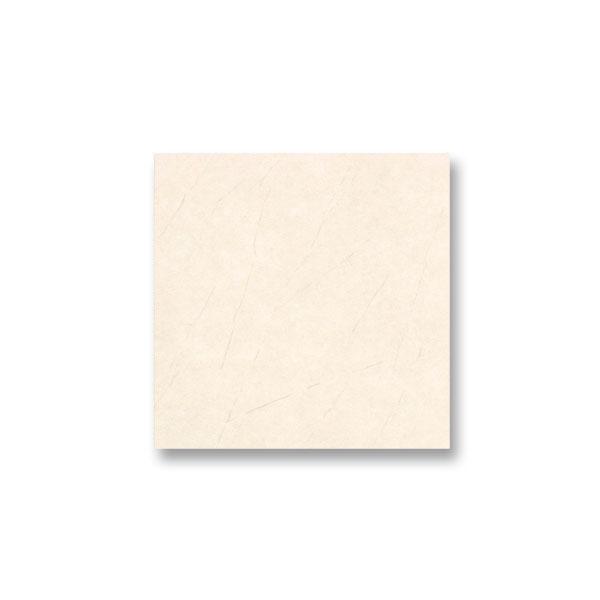 Porcelain 60x60  16629